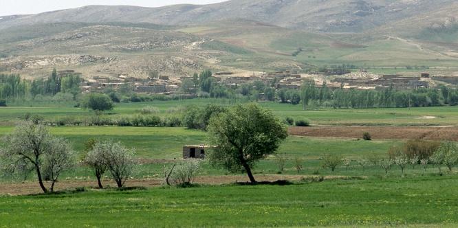 Abad Ali, Iran. 2008